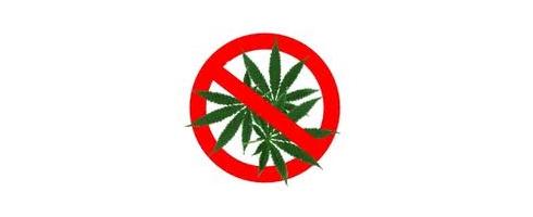 cannabis-interdit